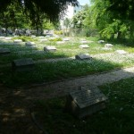 Dugonics temető 2